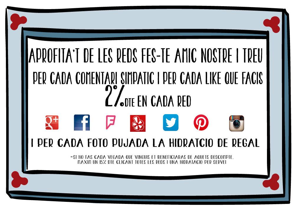 DTE-Xarxes socials-